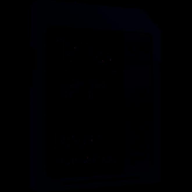 LEXAR SDXC 128GB 1667x Pro UHS-II