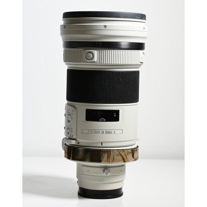 Sony A 300mm f/2.5 G SSM II