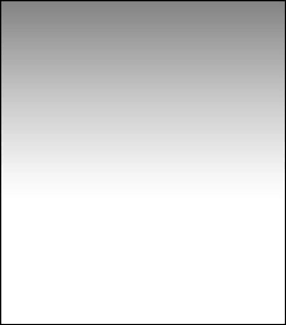 LEE FILTERS Filtre degrade ND 0.6 Soft 150x170